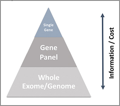 Figure 1. Genetic testing information vs cost.19