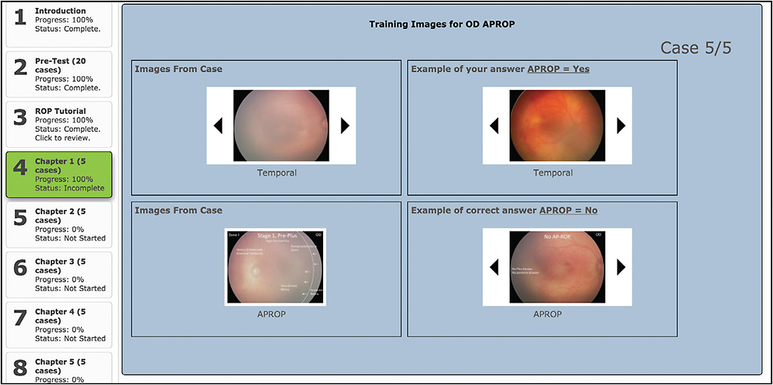 Figure 2. Individualized feedback following completion of each chapter of the retinopathy of prematurity learning system.